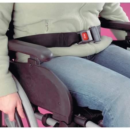 cintura di sicurezza del sedile 402101