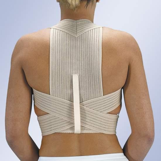 Espaldera transpirable - Banda ancha dorsal de tejido elástico multibanda transpirable.