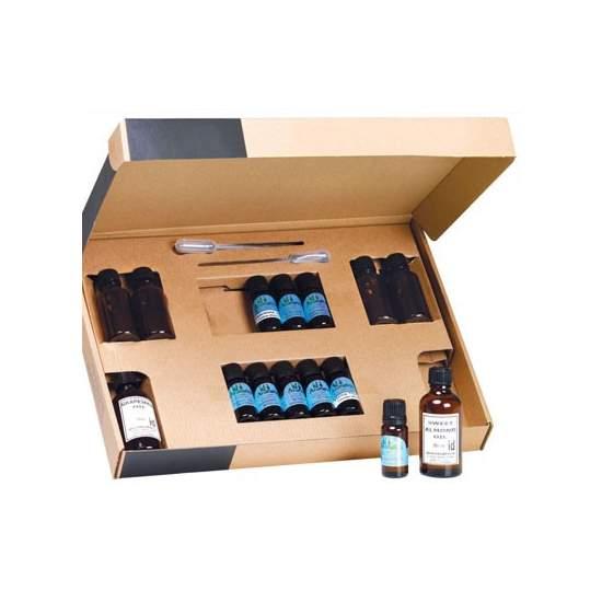 Kit completo de iniciación aromaterapia - Conjunto de esencias y difusor de aromaterapia