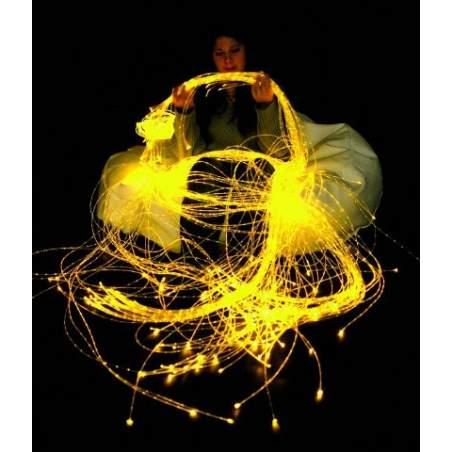 La fibre optique 100 - 1m