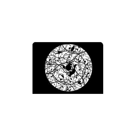 disque graphique pour Space Projector