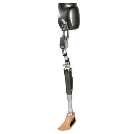 Articulación de cadera Helix 3D