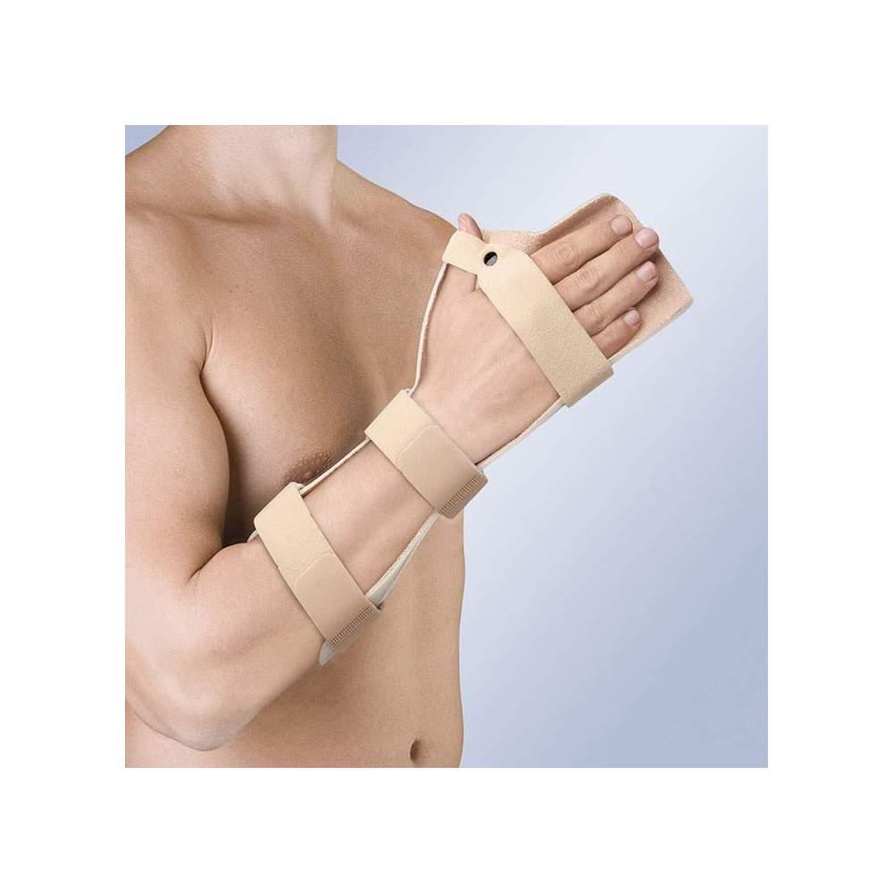 FERRULE atordoar FUNCIONAL POSIÇÃO mão espalmada TP-6104