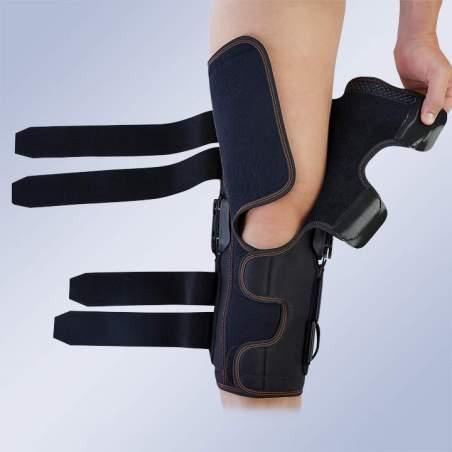 flexão do joelho de comprimento e extensão