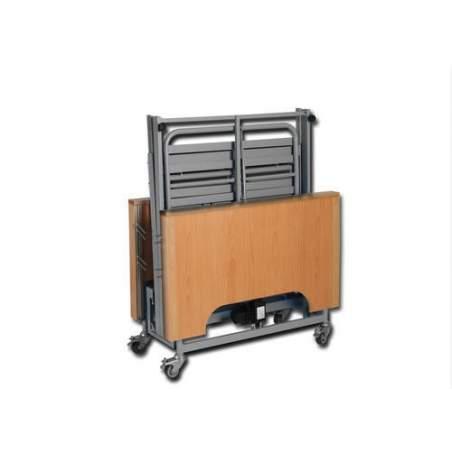Cama articulada EcoFit Plus con carro elevador+incorporador+barandillas