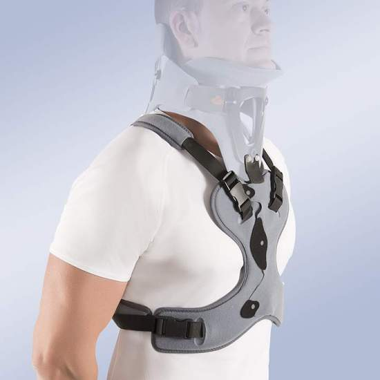 Support thoracic extension for mandibular occipital immobilization - Made of low density polyethylene, composed of two valves joined together by Velcro side closures. The orthosis has an inner padded foam lining and velor outer lining, which increases the comfort sensation avoiding the appearance of...