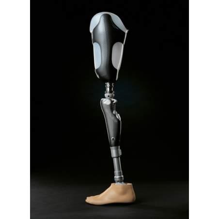 Lower limb amputation