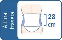 CORSÉ KNIGHT abdomen péndulo